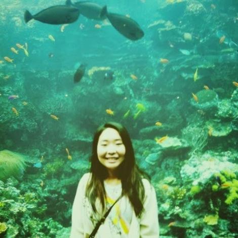 GA Aquarium
