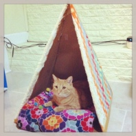 I made that tent for Tigger!